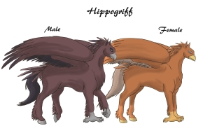 CA Hippogriffs