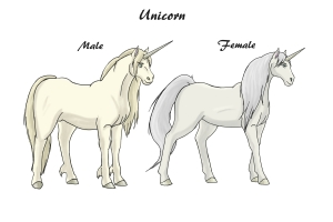 CA Unicorns