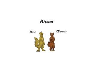 CA Wescats