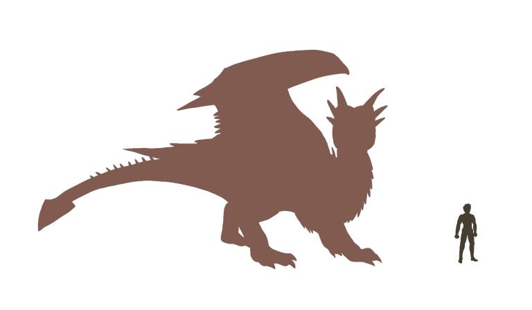 Tamaño de las monturas Dragon-size-chart-draco-colour