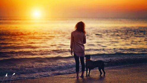 a-evening_walk_with_best_buddy-1430831