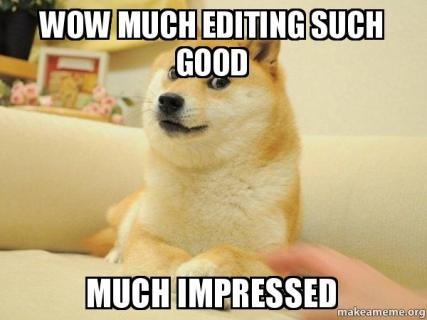 wow-much-editing