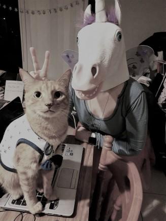 Crazy Cat Lady Slate