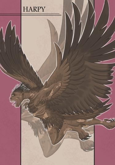 Profile Harpy